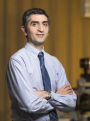 Professor Kiarash Khosrotehrani