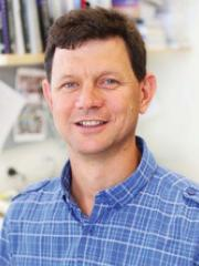 Professor Matt Sweet