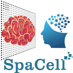 SpaCell logo
